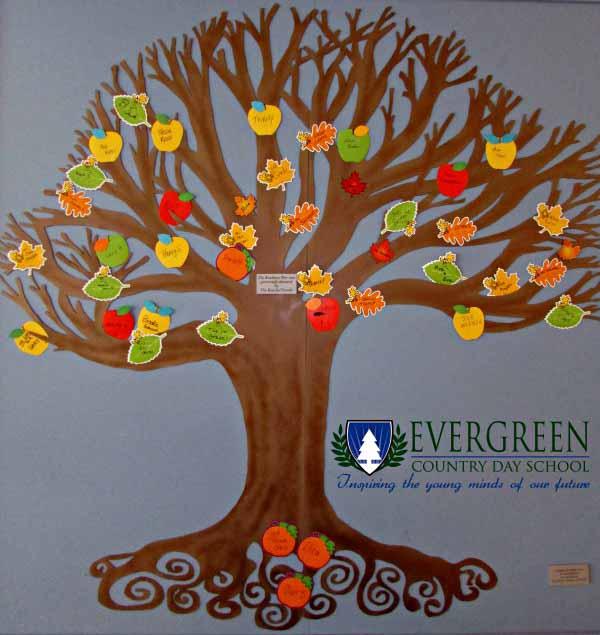 Kindness tree at Evergreen School