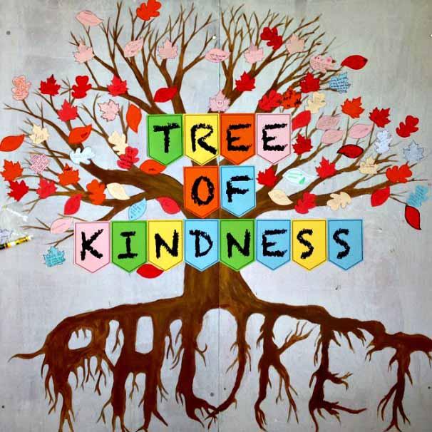 Kindness tree at Phuket Academy