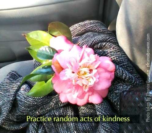 random-acts-eleanorbrownn