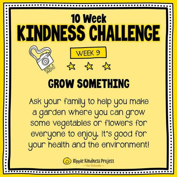10 Week Kindness Challenge For Kids – Week 9